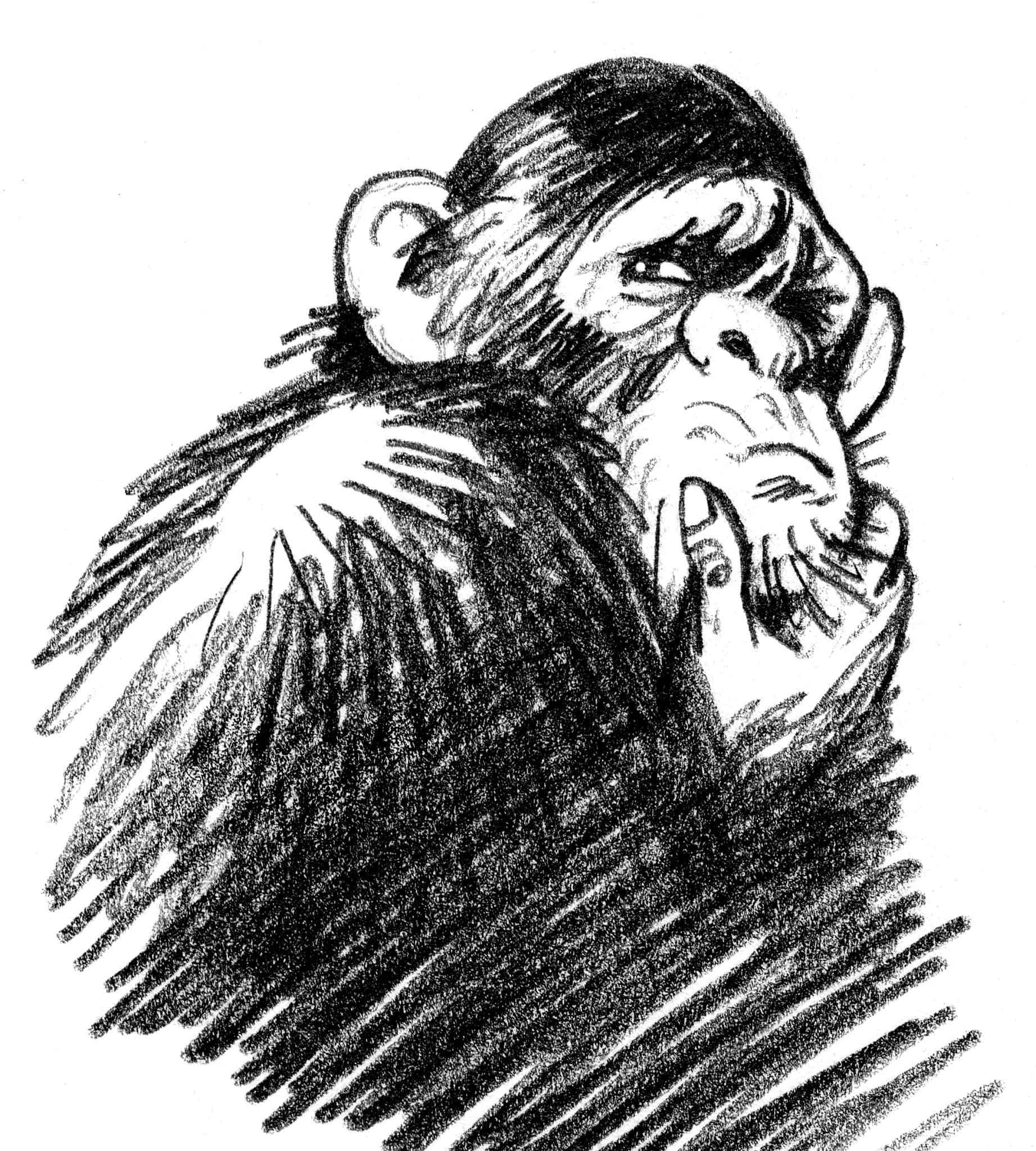 KH2900N-battle-monkeys-pensive-chimp