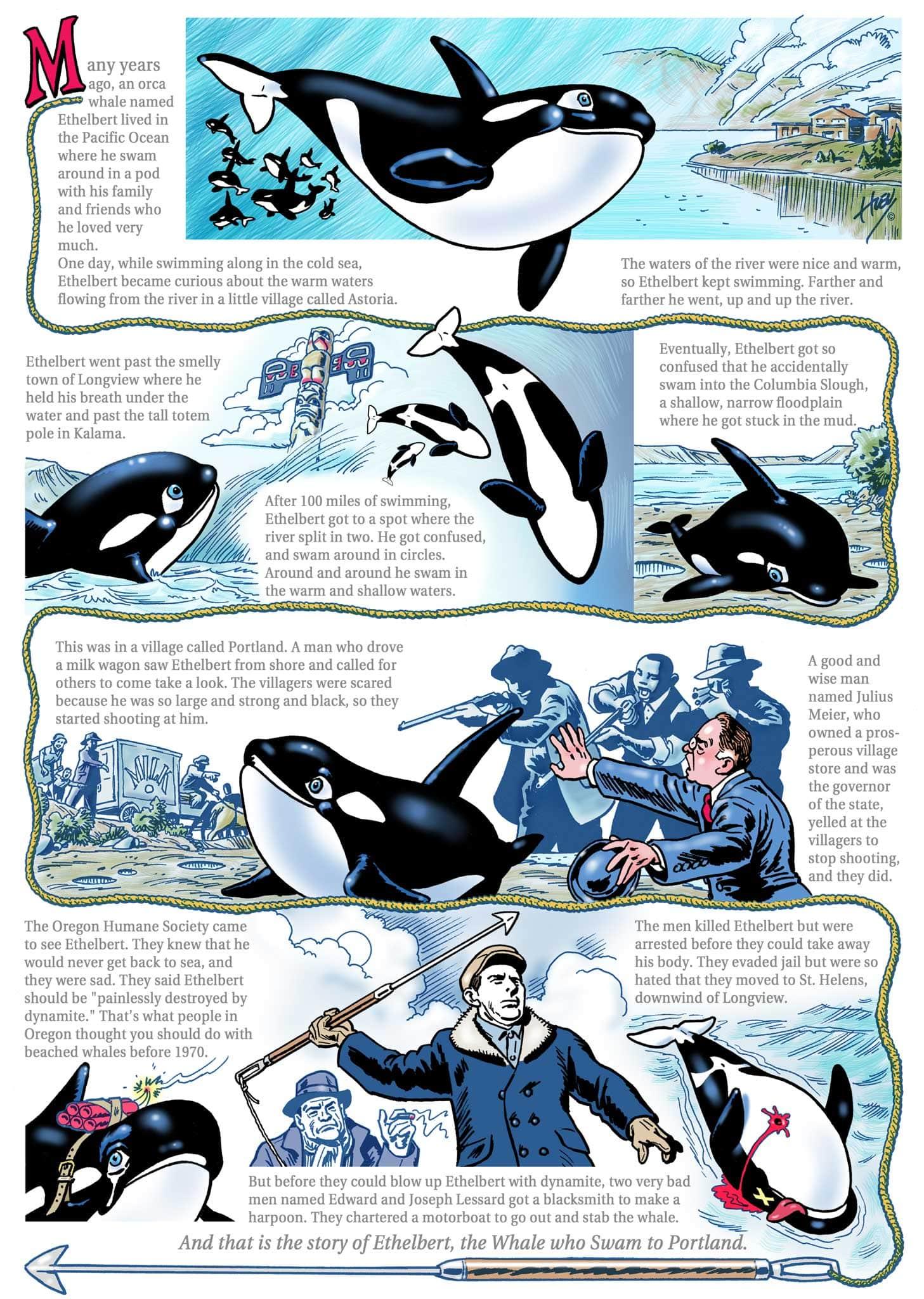 KH3412-ethelbert-orca-killer-whale